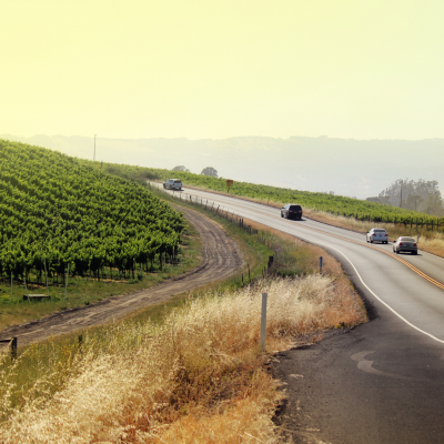 driving in wine country